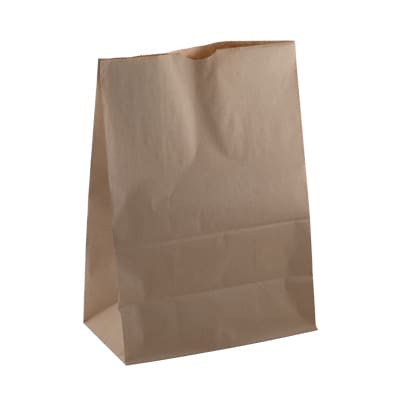 Checkout Paper Bag